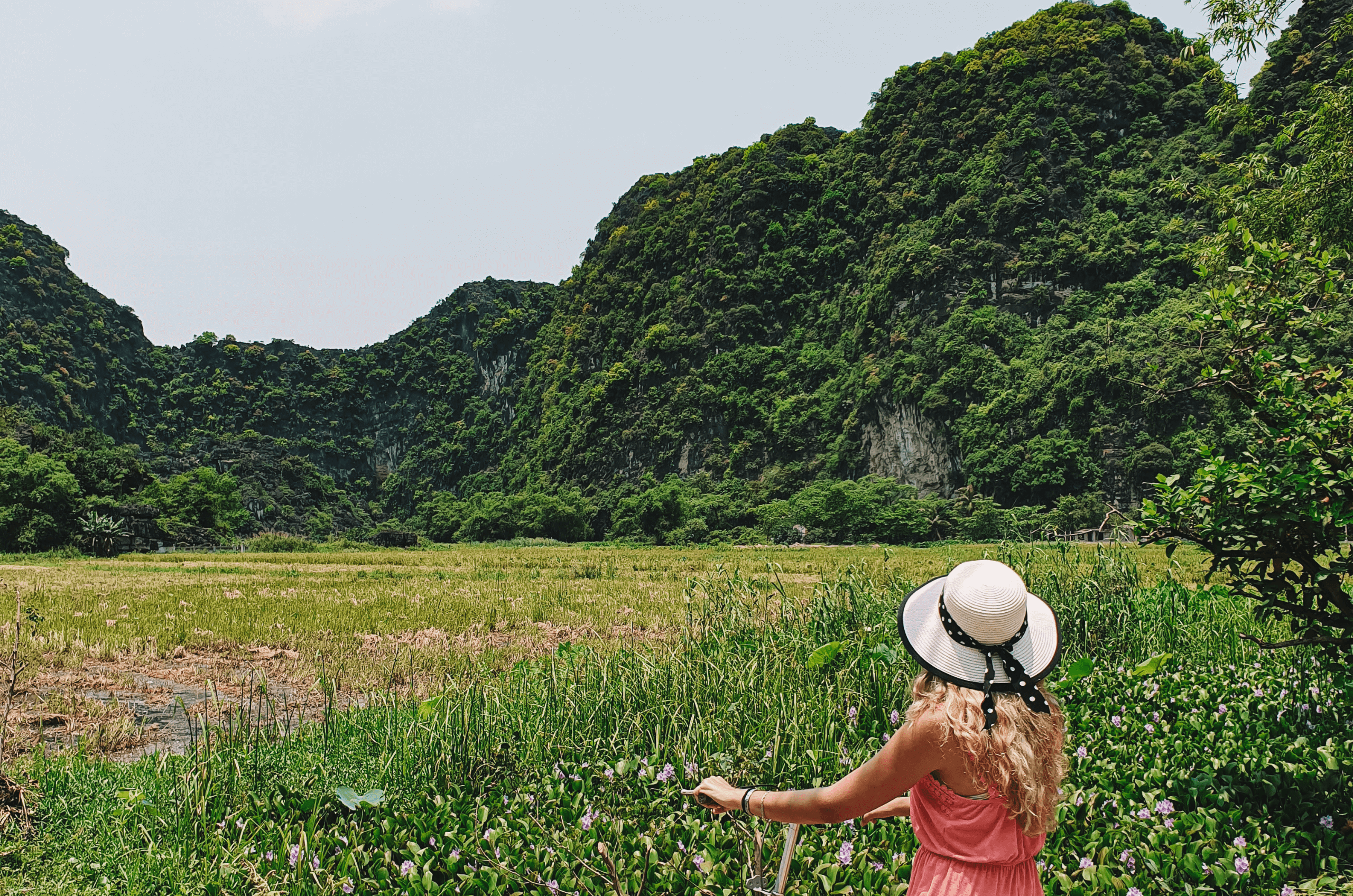 Feature image for Ninh Binh